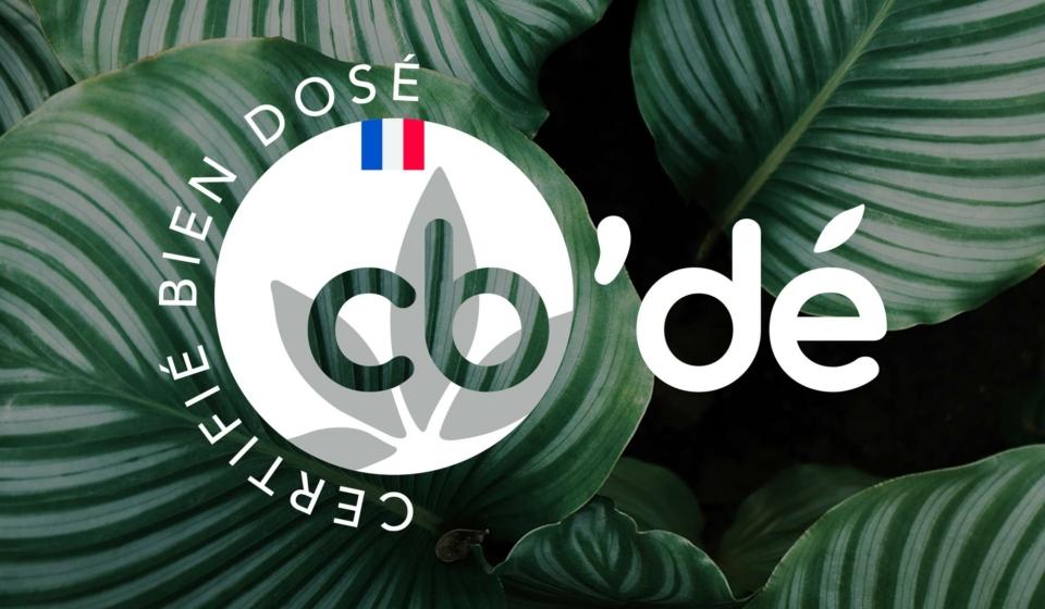 Logo-CBDE-article