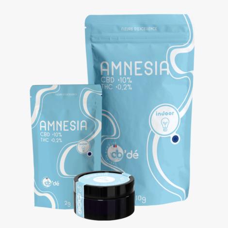 Amnesia - Full gamme